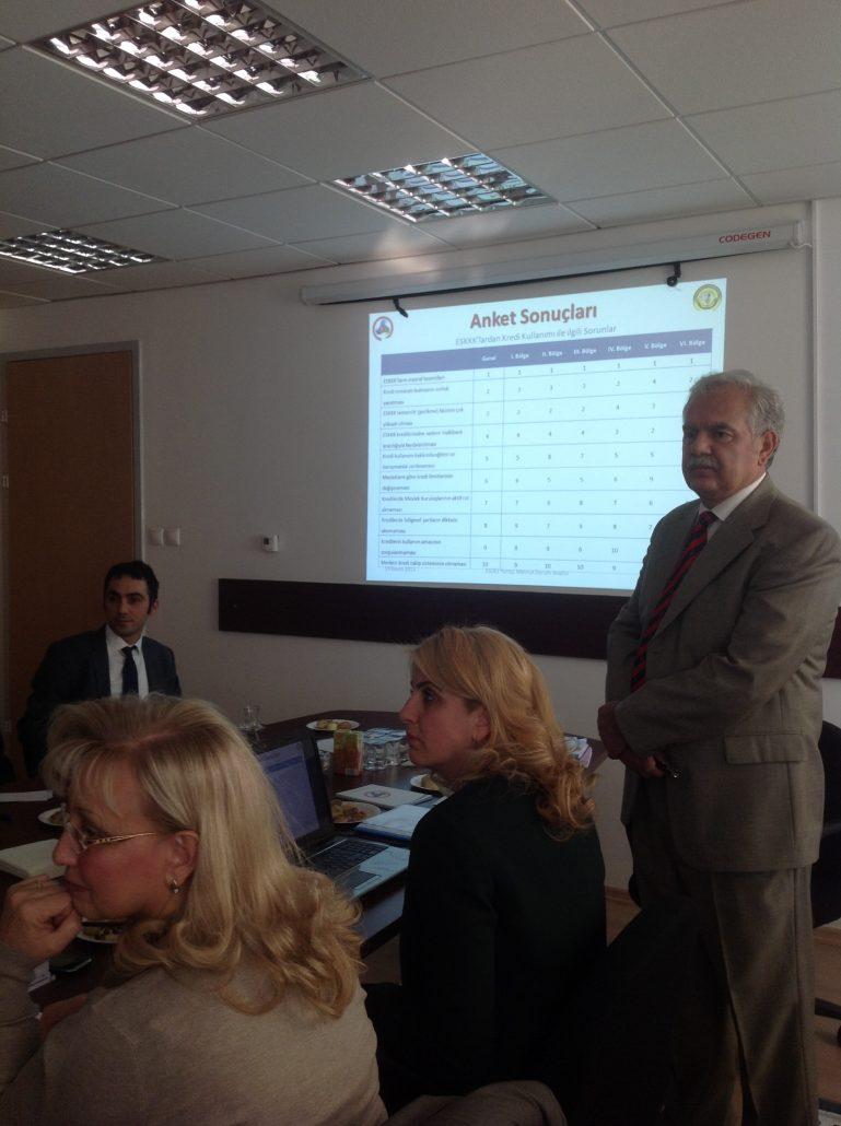 ESDES Projesi Toplantısı, 2013
